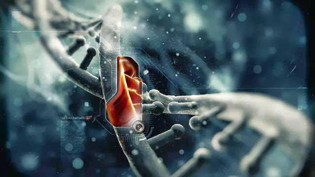 Коварный ген. Ученые определили еще одну наследственную мутацию, ответственную за развитие рака